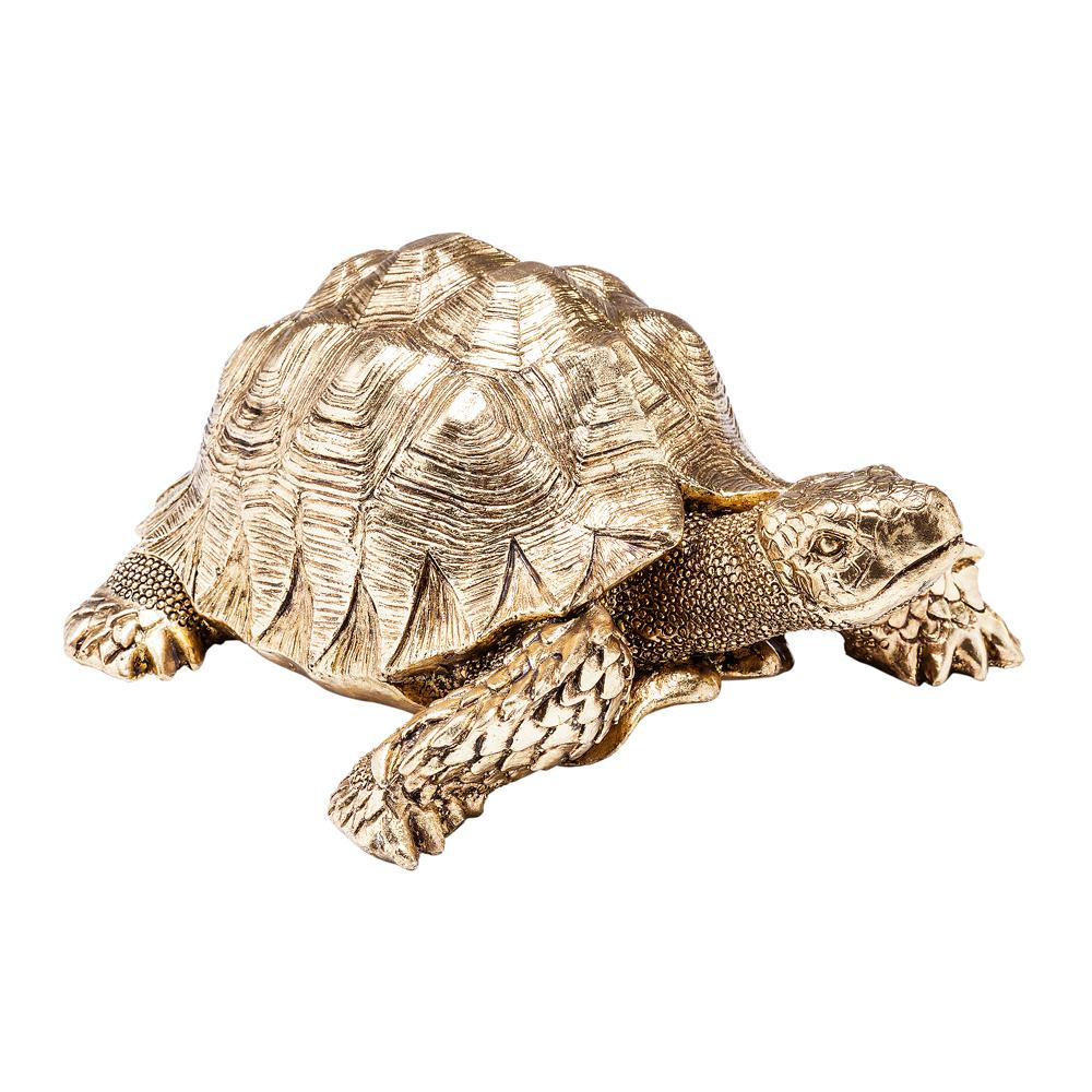 Gold tortoise small
